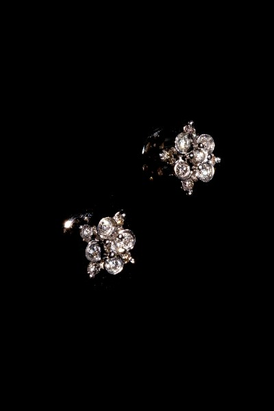 Sandley diamond earring